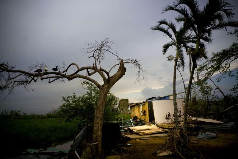 美屬波多黎各遭到瑪莉亞颶風重創,島上340萬人斷電、缺乏乾淨水源和基礎物資。(美聯社)