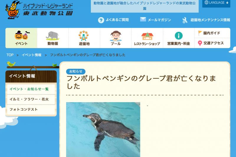 東武動物園貼出「葡萄君」過世的訃聞。