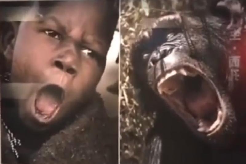 中國攝影展將非洲人與黑猩猩等動物的照片並列展示,當地非裔社群嚴重不滿,引發國際關注。(圖/截自影片)