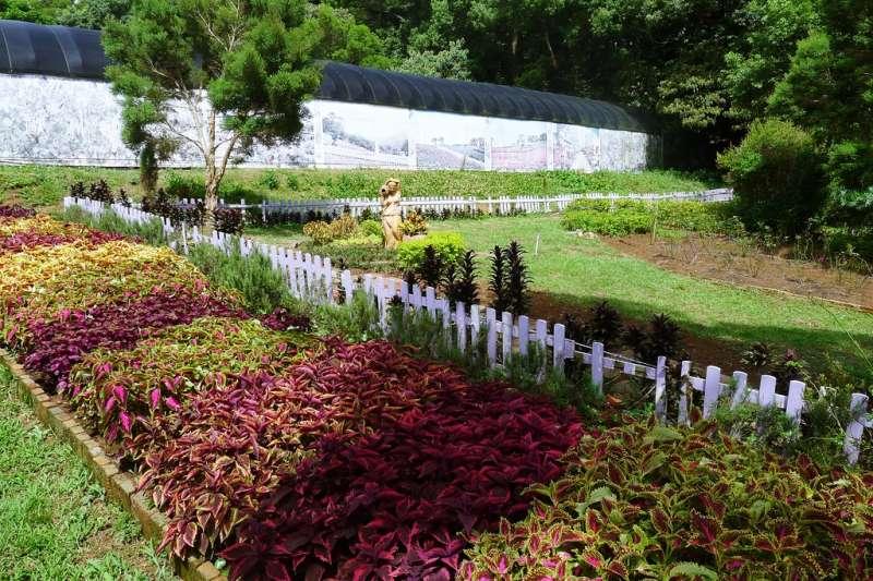 桃園的農場,美麗又好玩!(圖/lohasteru@flickr)