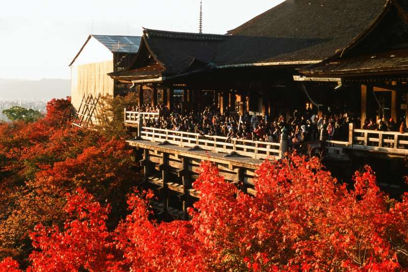 京都的私藏賞楓景點一次公開,這個秋天,就讓浪漫楓葉陪你度過!(圖/Sai Mr.@Flickr)