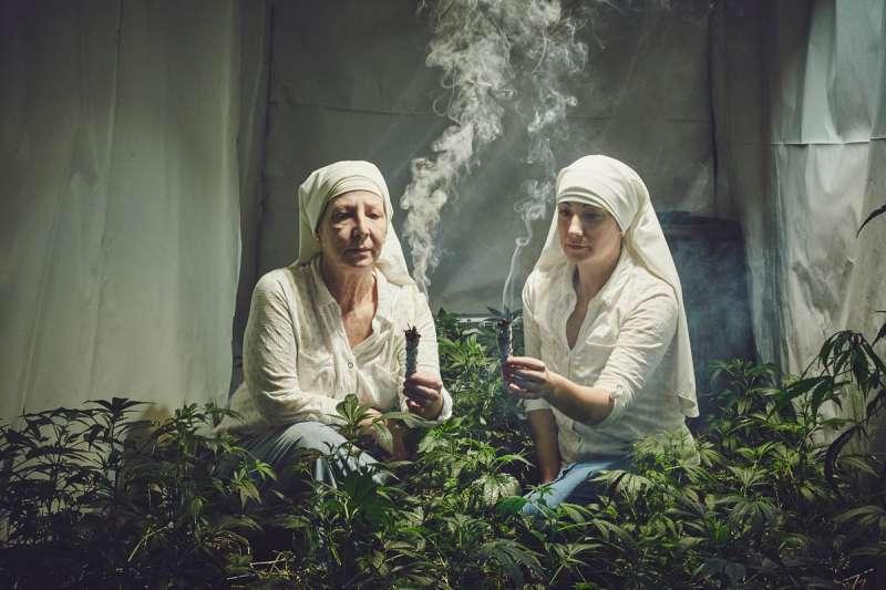 加州這群特別的修女專種大麻,用以製作神聖藥物幫人治病。(圖/言人文化提供)