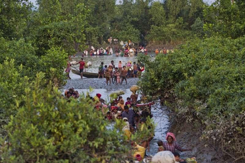 羅興亞難民涉水越過納夫河(Naf),逃往鄰國孟加拉。(美聯社)