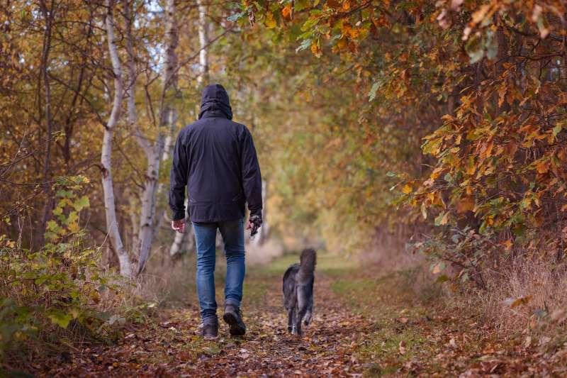 瑞典最新研究指出,主人遛狗還可因此增加運動量,而比起有家庭的養狗人士,獨居者較常帶狗狗出外散步。(取自Pixabay)