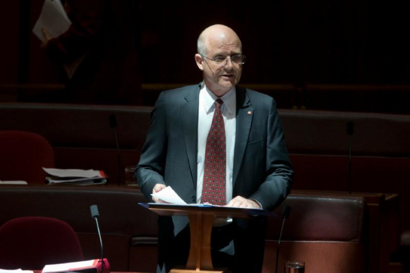澳大利亞自由民主黨參議員大衛·利昂傑姆。(美國之音)