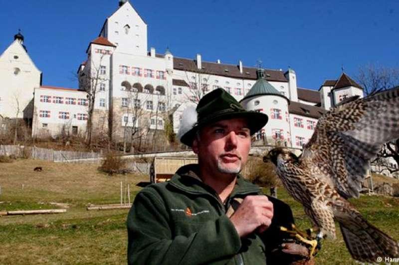 德國馴鷹 許多國家都有馴鷹的習俗。馴鷹關鍵在於培養信任感。圍繞馴鷹這一主題,也發展出相關的音樂、詩歌、舞蹈等藝術。2012年,聯合國將多個國家的馴鷹傳統列入非物質文化遺產名錄,如今德國的馴鷹傳統也被收錄進來。(德國之聲)