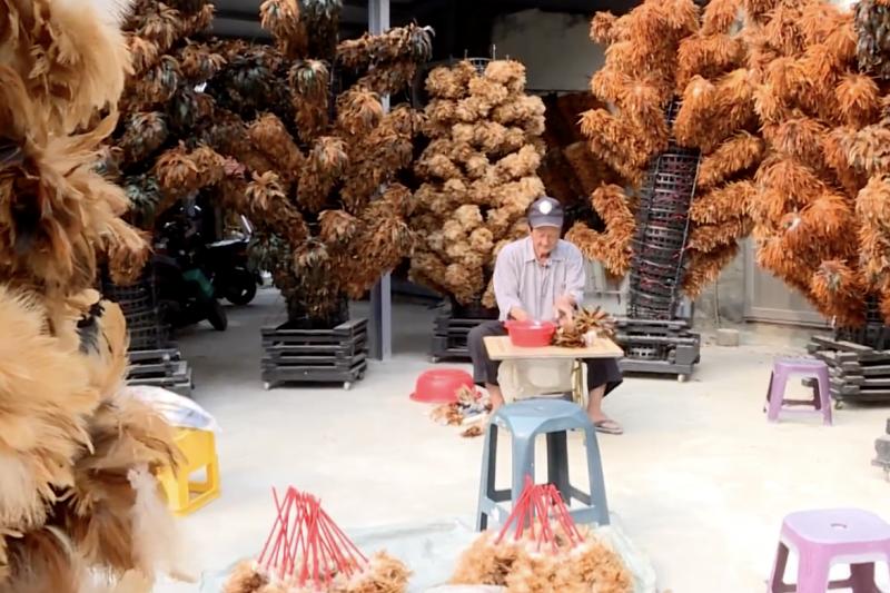 現年73歲的雞毛撢子職人陳忠霞,置身曝曬雞毛撢子的羽毛海中,每日與背毛、尾巴毛、脖子毛、母雞毛等羽毛為伍,就是希望編製出方便耐用的雞毛撢子。(圖/風傳媒 The Storm Media@youtube)