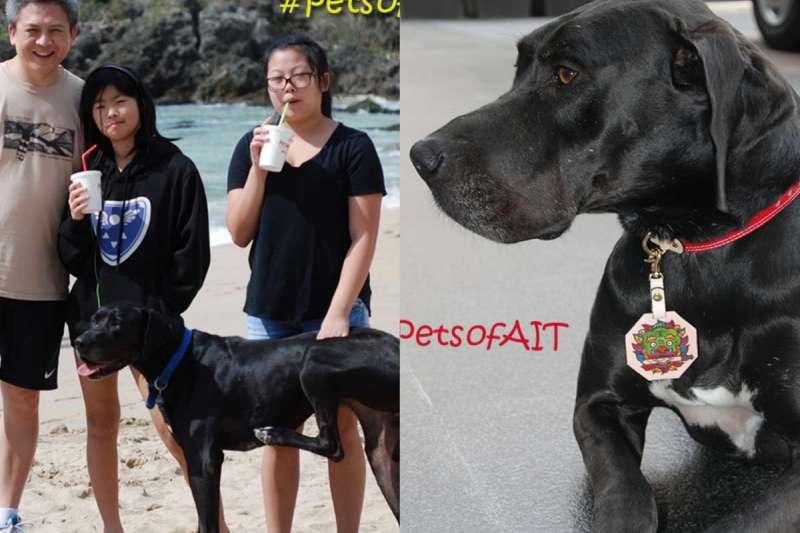 AIT處長梅健華與夫人陳舲舲時常帶著愛犬Hope出去玩。(取自美國在台協會網站)