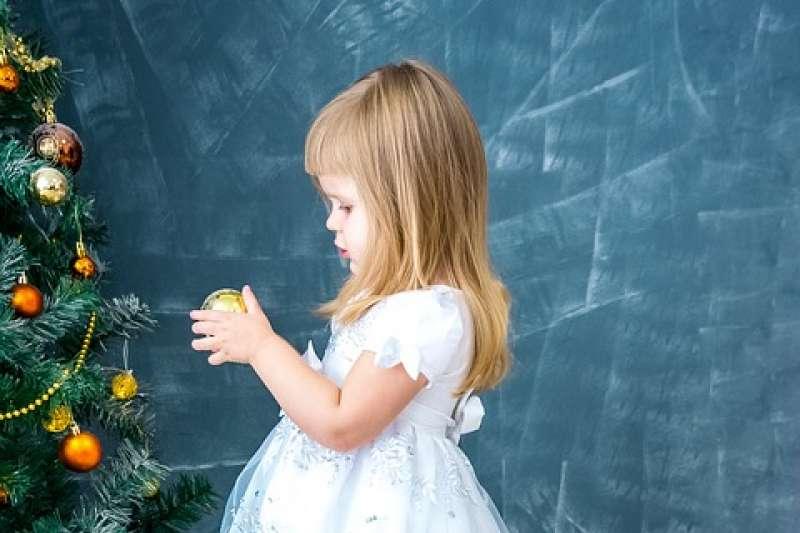 荷蘭兒童協助回收耶誕樹來賺取零用錢(取自Pixabay)