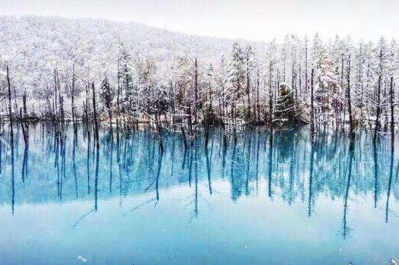 大老遠跑到北海道,只看雪就太可惜囉!(圖/Hokkaido@Facebook)