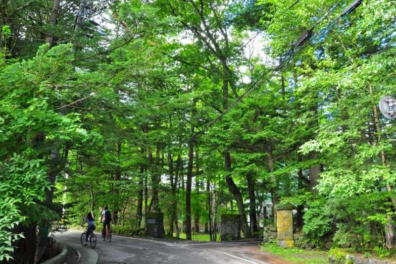 輕井澤設有寬廣的人行步道,尤其適合單車旅行,享受森林浴所帶來的芬芳清香!(圖/ZEKKI Japan提供)