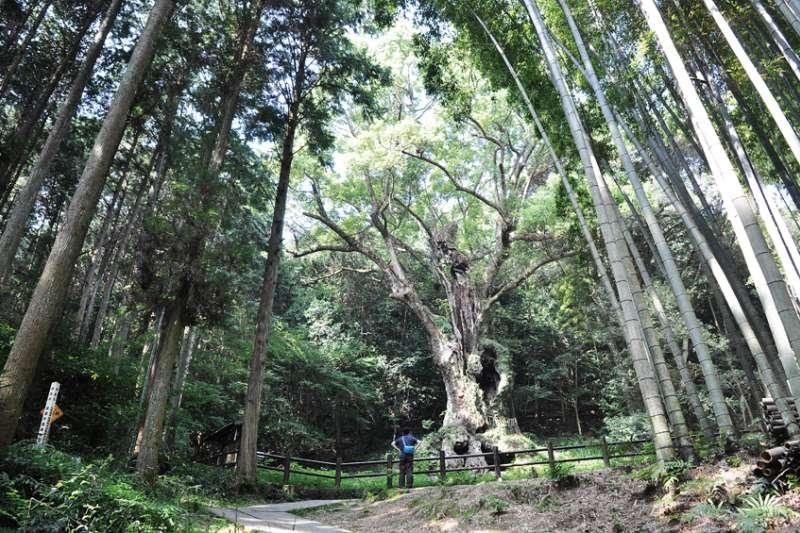 九州的武雄有天然美景、優質溫泉和深厚藝文底蘊,文青絕對會徹底愛上它!(圖/山岳文化提供)