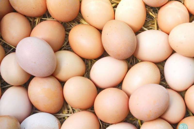 母雞產蛋時隨生產期間環境、溫度或生產時壓力等因素,可能使蛋殼產生厚薄情況及顏色分佈不均之狀況。(圖/食力foodNEXT提供)
