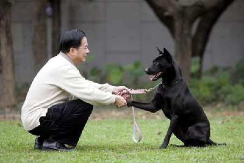 前總統陳水扁向支持者發出line訊息,以「阿扁」和勇哥虛擬對話文,暗諷仍未特赦扁的總統蔡英文。(取自總統府)