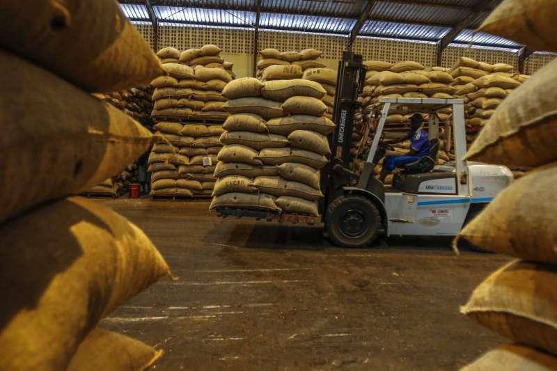 被分裝成袋,準備運送的可可豆。(截自Mighty Earth)