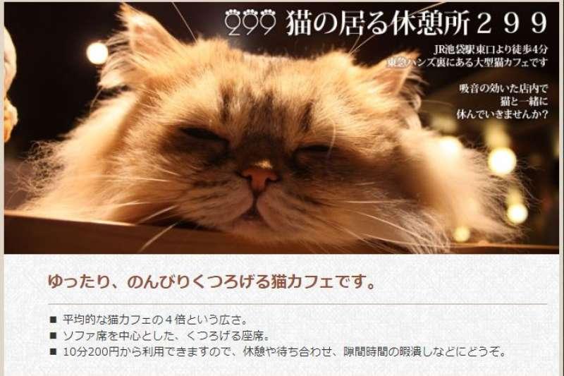 坐落於JR池袋車站附近的貓咪複合式咖啡廳。(翻攝店家網站)