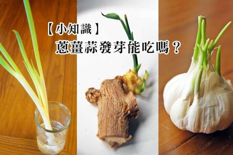 蔥薑蒜是台味香料三寶,但如果放久發芽了,怎麼辦?(圖/台灣好食材提供)