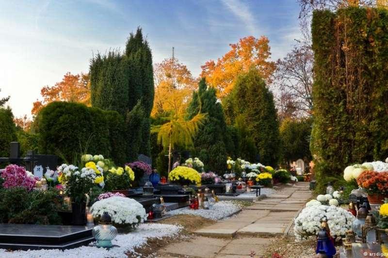 火葬、土葬、海葬或樹林葬,要怎麼葬?一探德國的殯葬文化。(德國之聲)