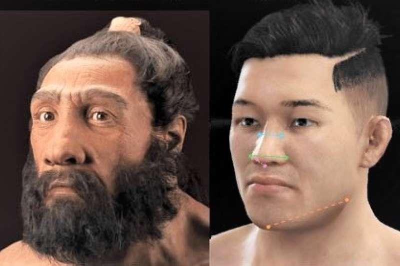 為何古代人類的面部重建圖都有共同特點,鼻子特別大呢?(圖/the scientist官網)