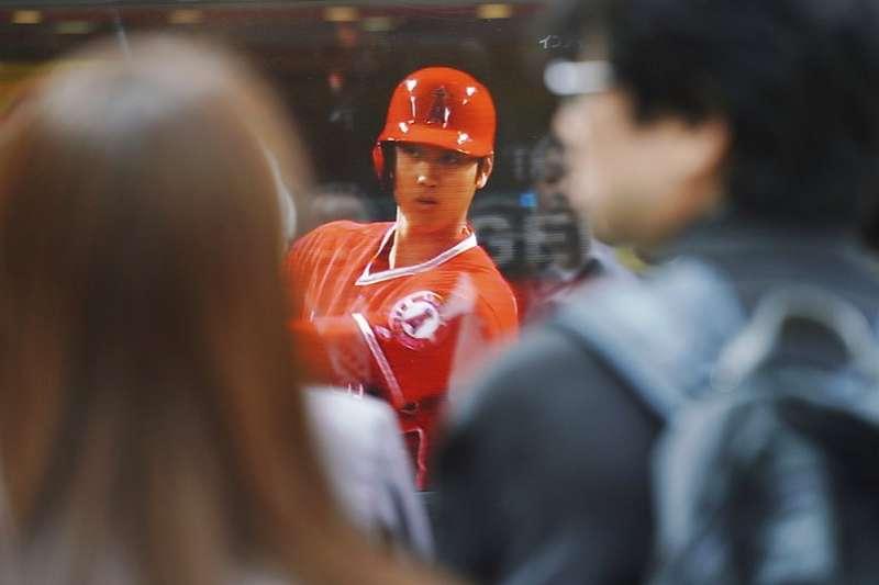 天使大谷翔平(中)在大聯盟揚威,不僅日本知名大開,全美日裔球迷也湧進球場加油。(美聯社)