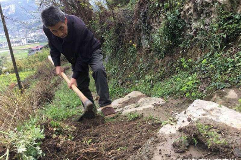 李顯學正在山道上除草。(圖/澎湃新聞提供)