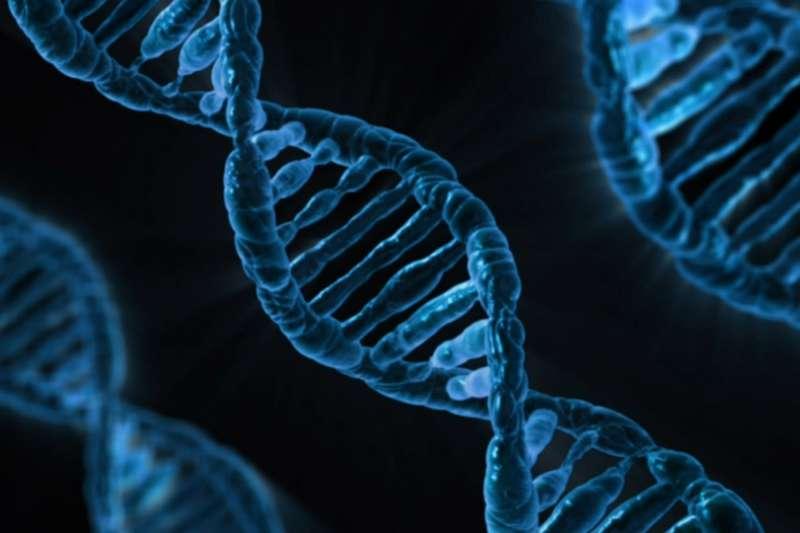 癌症患者一旦癌細胞轉移,死亡率也將大增。中研院耗時逾8年,領先全球找出癌細胞轉移的關鍵基因(PSPC1),是造成6、7成癌症轉移的元兇之一,是科學界一大突破。(情境示意圖,取自PublicDomainPictures@pixabay)