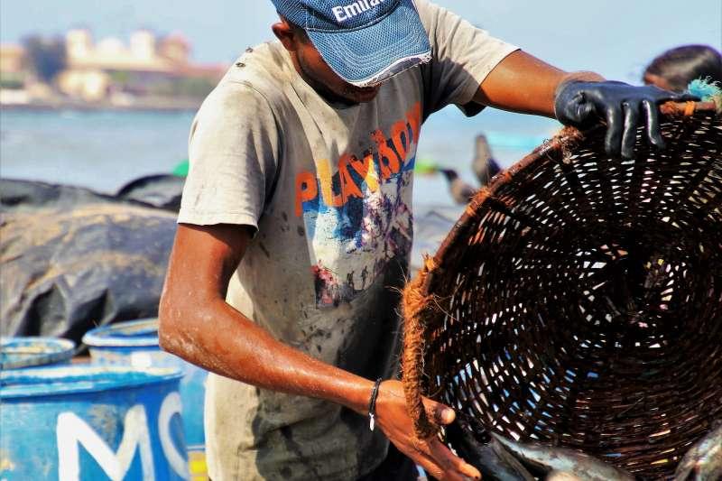 民進黨立委陳曼麗今召開記者會,指印尼漁工表示,遭雇主欠薪,與其協調還被毆打。圖為漁工示意圖。(取自pixabay)