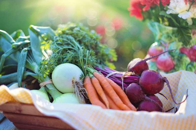 全球有機農業持續發展,直至2015年底,有179個國家從事有機耕作,全球有機種植面積達到5090萬公頃,有機食品市場產值更是達到816億美元。(圖/截自pexels)