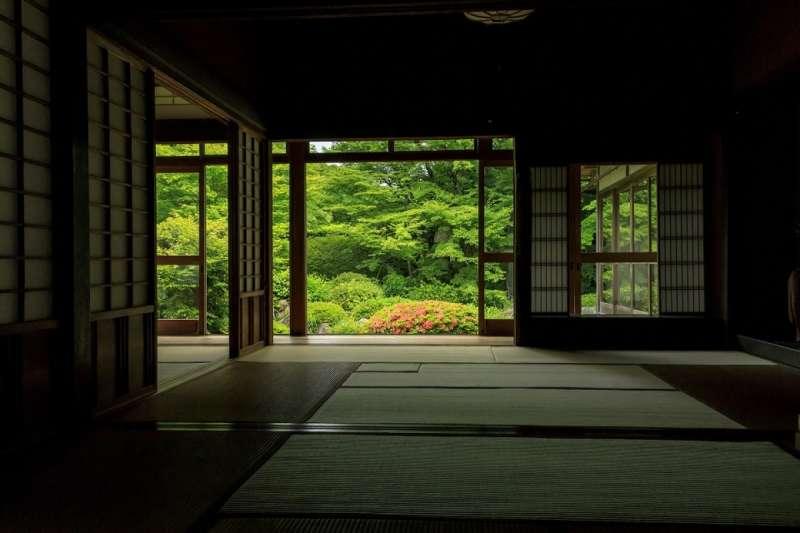 屋內的幽暗與閃閃發亮的青楓形成了優美對比,能欣賞到與秋天不一樣的絕景。(圖/ZEKKEI Japan)