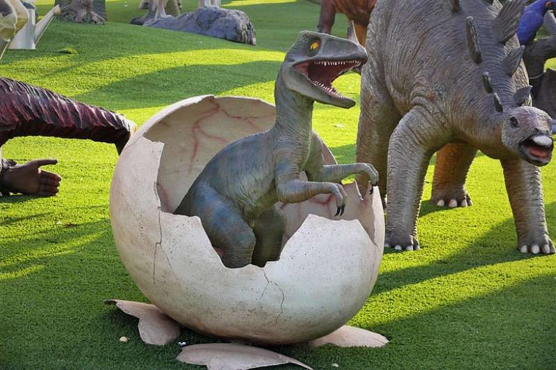 恐龍那麼大隻、那麼重,坐在蛋上孵,寶寶難道不會碎光光嗎?(圖/MathKnight and Zachi Evenor@wikimedia commons)