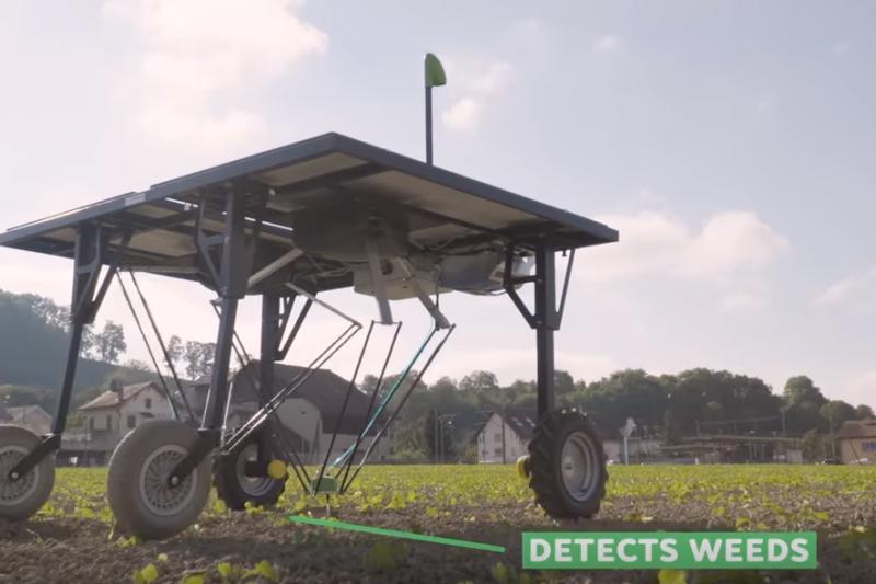 瑞士開發出新機器人,宣稱能針對雜草用藥,大幅降低作物殘留農藥的可能性。大砍 95% 除草劑用量,對農人和消費者都是一大福音。(圖/截自 Youtube)