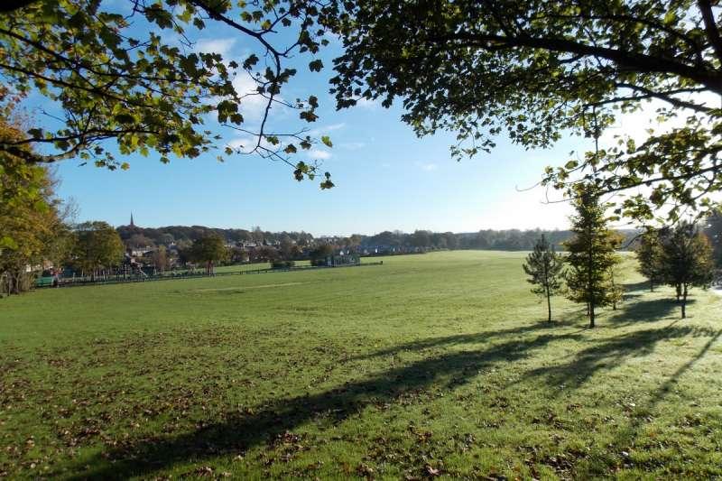 英國2010年起實施撙節政策,大砍政府預算,造成地方政府必須削減公共設施。圖為英國小鎮普列斯考特(Prescot)計畫賣出的布朗斯公園(Browns Field)。(普列斯考特鎮議會)