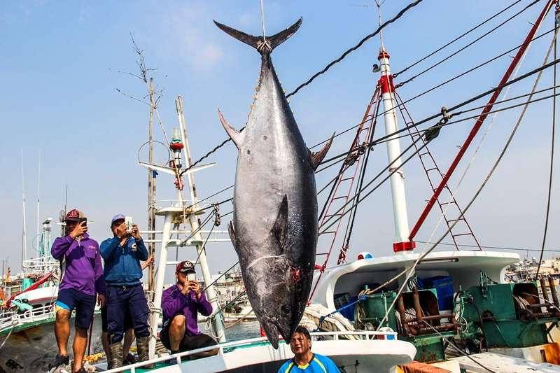 到東港除了吃黑鮪魚,還可以到這些地方玩。(圖/潘孟安@facebook)