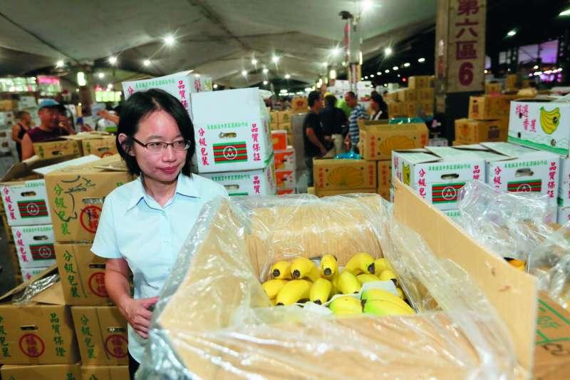 香蕉價跌,蕉農受苦。(柯承惠攝)