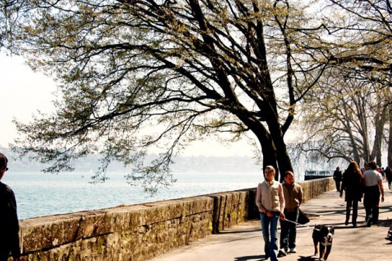 研究結果顯示,獨居老人與離婚者更有尋求死亡協助的傾向。(圖/作者提供)