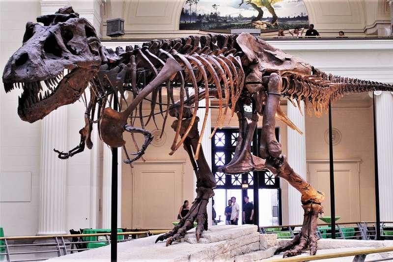 1993年《侏羅紀公園》上映後,造成全球瘋恐龍的熱潮,然而這股熱潮竟也導致恐龍化石買賣的盛行,真正想用化石做研究的博物館、科學家都買不起了…(圖/Connie Ma@wikimedia commons)