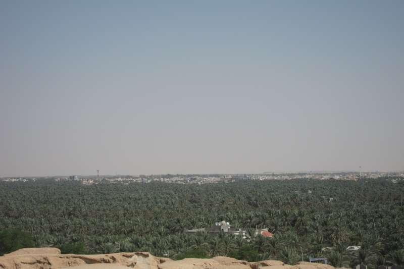 沙烏地阿拉伯的哈薩綠洲(കാക്കര @Wikipedia/CC BY-SA 3.0)