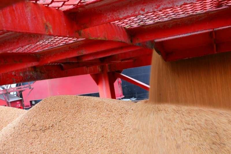 2018年4月4日,在中國江蘇南通的一個港口進口的大豆。中國對美國增加關稅的商品以農產品和汽車為主,包括大豆。(美國之音)