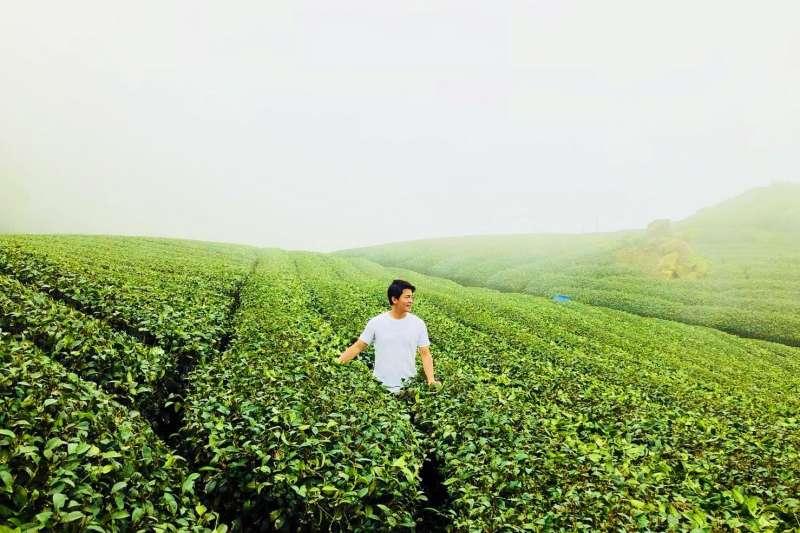 嘉義縣政府邀請旅行說書人謝哲青,7月9至10日前來「跟著茶旅行」,尋訪美麗福爾摩沙傳說中的茶鄉山城。(圖/嘉義縣政府提供)