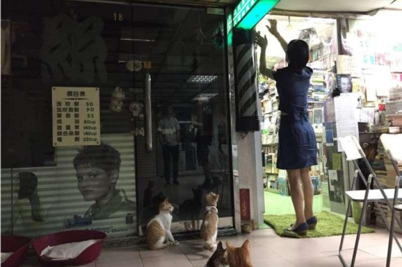 深夜陳琁開始整理書店、餵貓。(BBC中文網)