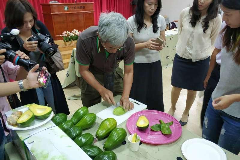 酪梨又被稱為牛油梨、奶油梨、黃油梨,在台灣又被稱為「幸福果」。(圖/嘉義縣政府提供)
