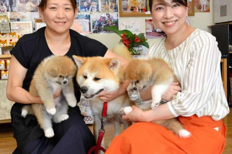 抱著小溫與幼犬的小林薰(左)與姊姊佐佐木桂(圖/潮日本提供)