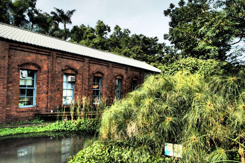 橋頭糖廠為臺灣第一座現代化機械式製糖工廠。(楊啟正提供)