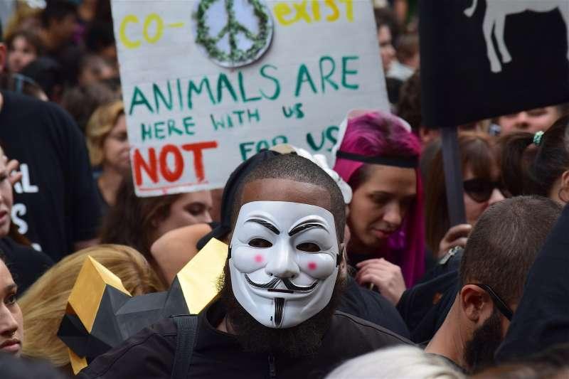 動保人士上街為動物爭取權益。(pixabay)