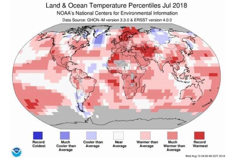氣象專家鄭明典援引美國國家海洋暨大氣總署(National Oceanic and Atmospheric Administration,NOAA)的資料指出,今年7月為自1880年有現代分析以來全球平均氣溫的第4高溫。(截自NOAA/NCEI)