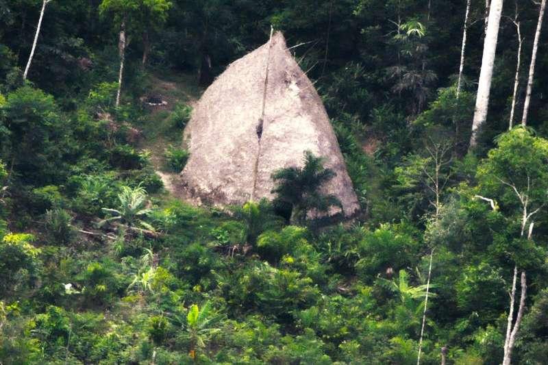 巴西國家印地安基金會去年7月進入亞馬遜叢林探查所拍下的照片,圖中為亞馬遜傳統草屋。(AP)