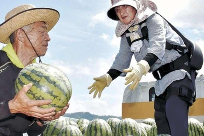 穿上外骨骼支撐的日本高齡農家笑開懷表示:「能再奮鬥 15 年。」(圖/河北新報,智慧機器人網提供)