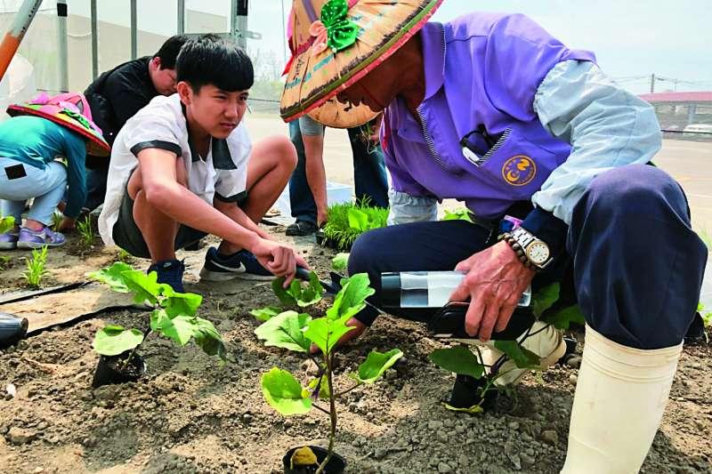 透過農事課程,長輩們除了可以傳承農務經驗知識,學生們也能有不同生活體驗。(圖/台中市政府提供)