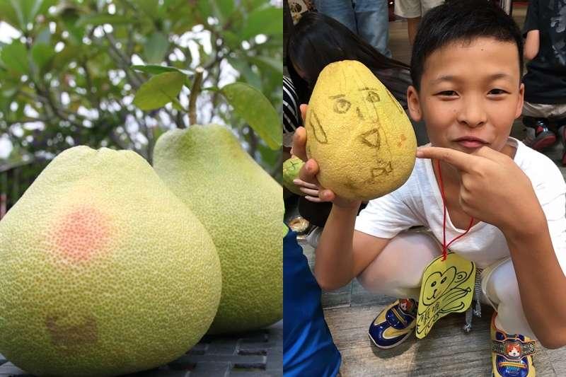30年沒被汙染過的土地,種出來的紅心柚子,簡直是中秋節最好的禮物,買了還能做愛心。(圖/黃絲帶提供)
