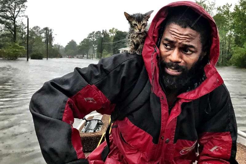 北卡羅來納州河口小鎮新伯恩在這場颶風淹水嚴重,當地居民西蒙斯與寵物貓咪14日獲救(AP)